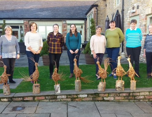 Pheasants return to Drewton's