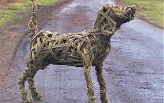 Ludo Labrador
